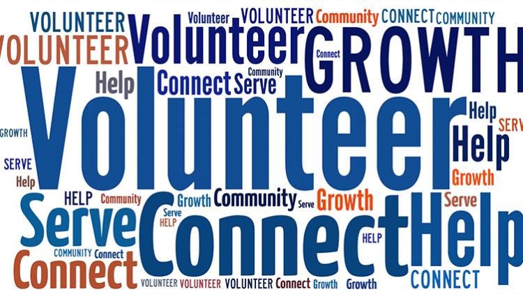 AGH (Avrupa Gönüllü Hizmeti) Nedir? – EVS