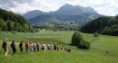 Avusturya'da Uzun Dönem Avrupa Gönüllü Hizmeti