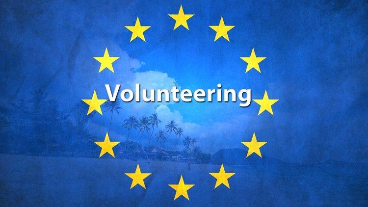 Avrupa Gönüllü Hizmeti Başvurularım Neden Kabul Edilmiyor?