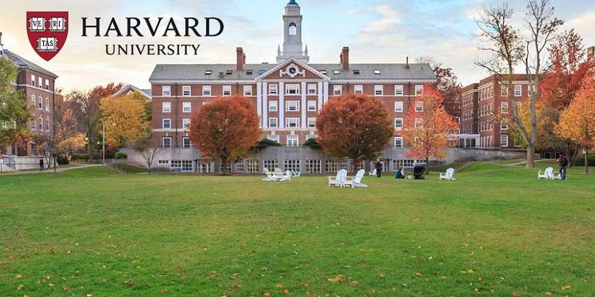 harvard-universitesi