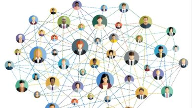 network-edinmek