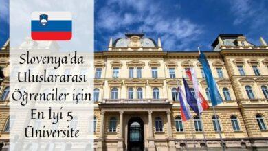 slovenya-universite-egitimi