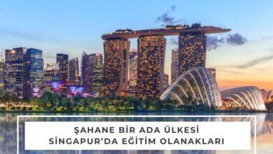 singapur-egitim